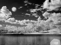 IR converted Canon G3 with external 950nm filter (LValdes) Tags: photoshop ir florida canong3 hialeah digitalir irconverted ameliaearhartpark lvaldes