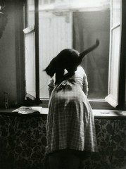 Willy Ronis (Decoupage girl) Tags: window cat willyronis