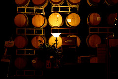 Leoness Cellars (xrogue81) Tags: lamp wine barrels winery temeculaca leonesscellars