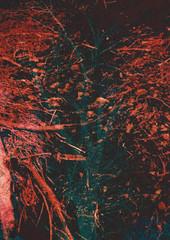 img13dblexp (E.M. Ramirez) Tags: film nature 35mm landscape lomo lomography nikon minolta doubleexposure surrealism grain filme psychedelic cosmic maxxum l35af 7000