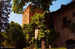 il borgo di Rivalta (Piacenza) (massimo mazzoni 78) Tags: tower colors torre castello piacenza gazzola rivalta croara castlel borgodirivalta