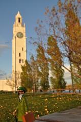 TORNASOL EN MONTREAL (elchicogris) Tags: trip tower clock torre montreal viajes reloj tintin oldmontreal tournesol canad vieuxmontreal tintn tornasol tryphon