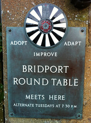Adopt, adapt, improve