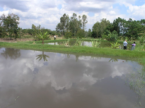 Aquaculture, Malawi. Photo by Jamie Oliver, 2008.
