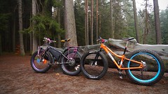 DUDZ (Hagbard_) Tags: flying jumping tour herbst mountainbike manual surly wald bltter bunt heide stausee 907 moonlander nosedive fatbike fatfun dickesrad