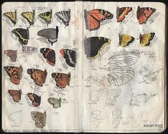 Pg 005-006b (after trek) (The Hike Guy) Tags: moleskine watercolor journal moleskinerie sierranevadamountains notebookism kolbykirk