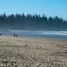 DSC_2055 Wickaninish Beach - Pacific Rim, Vancouver Island