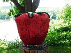 THEY MUST HAVE BIG STRAWBERRIES HERE (Visual Images1) Tags: strawberry owego newyork
