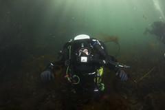 20160803-Eyemouth16 (Dacmirc) Tags: eyemouth diving ukdiving rebreather