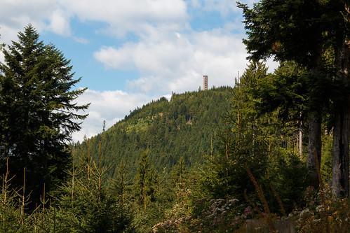 La Buchkopfturm à Oppenau