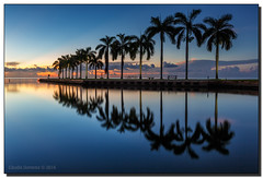 Morning Tranquility (Fraggle Red) Tags: florida miamidadeco palmettobay miami deeringestateatcutler deeringestate keyhole royalpalms palmtrees dawn twilight reflections clouds singleexposure longexposure adobelightroomcc2015 adobephotoshopcc20155 canoneos5dmarkiii 5diii 5d3 canonef1635mmf28liiusm