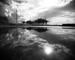 (23fumi) Tags: ilce7m2 sony sigma sigma19mmf28dn 19mm monochrome bw reflection sun water sky cloud puddle