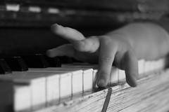 piano keys_1 (letalka) Tags: blackandwhite monochrome depthoffield music pianokeyboard piano stringedinstrument hand smog texture