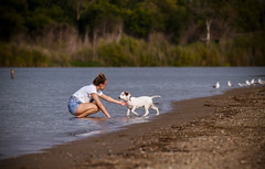 Abbie and Denali... (Mike Millspaugh) Tags: dog puppie abbie salamonie lake beach indiana summer