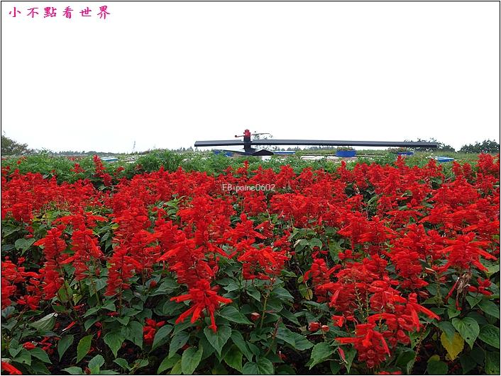 十勝之丘 花園 (10).JPG