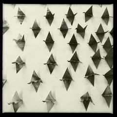 305/366 (b. Lynne) Tags: pattern papercrane photooftheday 366 project365 origamibird iphone4 iphoneography hipstamatic