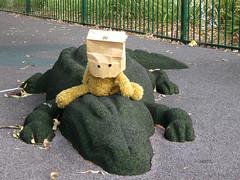 Never smile at a crocodile (still an angry muppet) Tags: lake playground play teddy equipment apex teddybear crocodile teddies gatton rubberised lakeapex teddybaghead rubberisedcrocodile