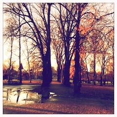 (C.Bry@nt) Tags: park oslo norway norge noruega scandinavia akershus vigeland iphone5 hipstamatic blankofilm lucasab2lens parkenparque