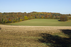 Field next to Bogey Lane, BR6 (Tetramesh) Tags: tetramesh london uk england britain greatbritain unitedkingdom davidsharp walk walks walking londonouterorbitalpath londonloop