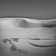 Dunes (adamfaulknergraphics) Tags: bw white black beach monochrome newcastle coast dunes conservation australia coastal nsw lands stockton wcl worimi