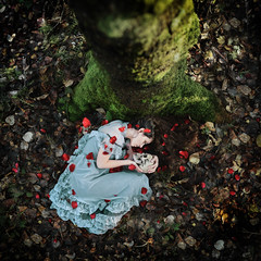 Underneath the Juniper Tree (Kindra Nikole) Tags: autumn boy red tree green girl loss leaves rose forest skull sadness grey petals moss woods mourning sister brother dirt juniper