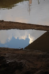 (  asaf pollak) Tags: park cloud reflection water puddle israel puddles yarkon yarkonpark          asafpollak
