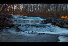 The Peace of Wild Places (SunnyDazzled) Tags: november trees red nature water forest landscape evening waterfall peace berries pennsylvania falls pa flowing lastlight shohola fallentrees