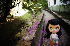 Goldie in Ouro Preto