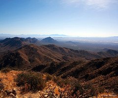 View from Wasson Peak (isaac.borrego) Tags: wassonpeak tucsonmountains mountains desert tucson sweetwatertrail arizona canon rebel xsi saguaro nationalpark unitedstates america usa nationalparks nationalparksystem nps findyourpark