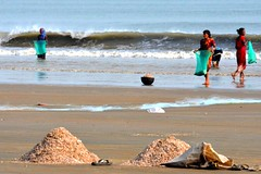 Hungry Shells....... (pallab seth) Tags: sea india industry beach women waves basket candid poor feeder poultry exploitation lowtide collectors orissa bengal collecting villagers bayofbengal digha traders calciumcarbonate limepaint middlemen brokenseashells governmentintervention tamronspaf70300mmf456divcusd