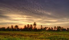 Belak Sunset