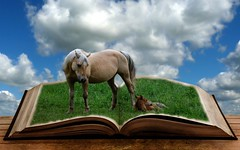 Book of Horse (TicKavich) Tags: sky horse grass digital book photo photomix creativephotocafe besteverdigitalphotography