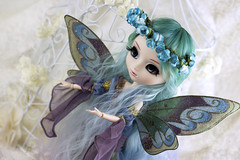Come and see the blue Fairy (Valrie Busymum) Tags: doll fairy groove pullip obitsu rewigged rechipped celsiy busymum