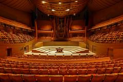 WDCH Auditorium (blueslk) Tags: modern california frankgehry waltdisneyconcerthall art losangeles city cityscape architecture gehry unitedstates us