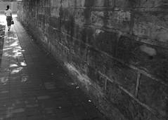 rush (vfrgk) Tags: woman rush walking wall walldetail shade treeshade lightandshadows lines geometry urbanlife urbanphotography streetphotography streetscene streetlife streetshot bw monochrome blackandwhite street rushing motion movement