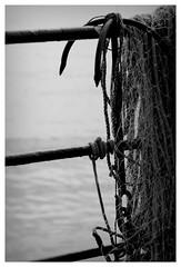 Filey-003 (glynneh) Tags: filey helios 442 seaside beach