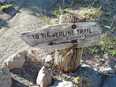 Timberline Trail sign (plainkacyjane) Tags: timberline trail sign arrow point direction wood worn weathered