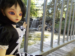 Angles are everything (azaeldragon.cd) Tags: luts kiddelf elfani waterfall gilroygardens bjd