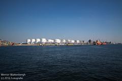 Flandria Havenrondvaart [12] (Werner Wattenbergh) Tags: flandria ferry schip veerboot antwerpen belgie bel