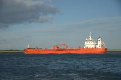 Sten Bothnia DST_8283 (larry_antwerp) Tags: 9378735 stenbothnia schip ship vessel        schelde        tanker