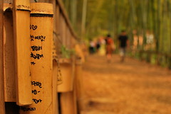 Not the Surface but the Words that matter (Sakib Mridha) Tags: writing bamboo outdoor busan outside southkorea 2016 nikon nikond60 d60 35mm colour yellow sunlight people handwriting