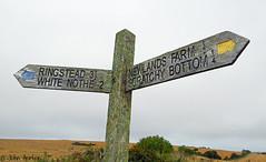 Signpost to Scrathy Bottom (Row 17) Tags: uk unitedkingdom gb greatbritain england dorset purbeck isleofpurbeck sign signs signpost rural footpath worldheritagesite jurassiccoast
