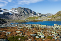 IMG_2280 Middyr på Haukelifjell (JarleB) Tags: haukelifjell røldal fjell høyfjellet hardanger hordaland water tur fjelltur høst autumn september middyr ulevå haukeliseter haukeli mountain