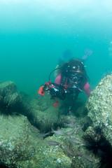 se3500_IMG_1079 (OKANO14) Tags: hong kong scuba diving