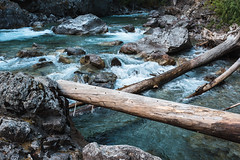 Wild Stehekin (zh3nya) Tags: sigma35mmf14 d750 river flow blue rapids logs logjam water rush washington pnw pacificnorthwest northwest outdoors rocks aqua nature northcascades cascades cascademountains northcascadesnationalpark ncnp