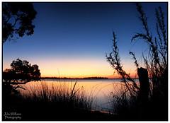First Stars (juliewilliams11) Tags: photoborder outdoor sky serene sunset landscape stars silhouette water shoreline canon longexposure blue hightide plant contrast newsouthwales australia