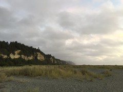 Gold Bluffs Beach - Wills RoadTrip 2From OLYMPIA SEPT 2016 (GCRad1) Tags: gold bluffs beach wills roadtrip 2from olympia sept 2016