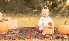 Fall Mini (Yen.Tor) Tags: fallseason fall season sunlight sunset sunshine sunrays baby babygirl family familyportraits familyphotographer familyportrait infantphotography infant outdoor outdoorphotography naturalbeauty nature nikon nikonphotography northcarolina nikonportrait childphotographer childphotography minisession smithfieldphotographer portrait