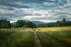 Blue Ridge Fence Line (shutterclick3x) Tags: blue ridge countryside meadow fence frankloose clouds