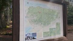 Mount Tamalpais: Rock Spring to Stinson Beach Hike (20) (Planet Q) Tags: mttam marinheadlands